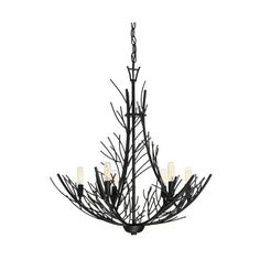 """Quoizel THL5006 Thornhill 6 Light 26"""" Wide Chandelier Marcado Black ($450) ❤ liked on Polyvore featuring home, lighting, ceiling lights, chandeliers, indoor lighting, marcado black, hanging chain lamps, black chandelier light, black ceiling lights and black lights"""