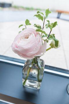 #FabFloraChicago #Jennography #WeddingFlowers #GreenhouseLoft #SpringWedding #Ranunculus #BottlesofBlooms #BlushBlooms #ChicagoWedding