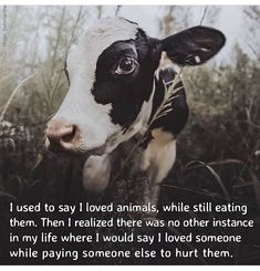 Once upon a time. when I was still ignorant of my senses. Go Vegan! I Love Someone, My Love, Vegan Quotes, Vegan Humor, Vegan Clothing, Vegan Animals, Vegan Beauty, Animal Welfare, Vegan Lifestyle