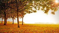 fall scenery pictures