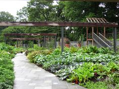 Potager / French Kitchen Garden - plant lists