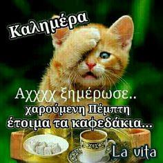 Πεμπτη Good Night, Good Morning, Tomorrow Is Monday, Greek Quotes, Picture Quotes, Thankful, Messages, Life, Anastasia