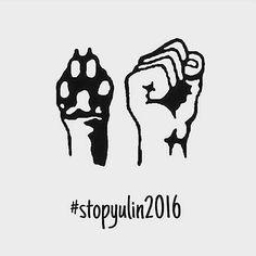 #stopyulin #stop #yulin #stopyulin2016 #dog #donteat #peta #help #iseehumansbutnohumanity #donteatdog #dogsarefriendsnofood @justinbieber @selenagomez #selenagomez #justinbieber #beliebers #selenator #stopyulinforever #stopyulinfestival #hashtag #l4l #l4f
