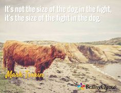 It's not the size of the dog in the fight, it's the size of the fight in the dog. / Mark Twain