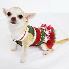 Crochet Dog Wedding Dress Bridesmaid Handmade Chihuahua by myknitt