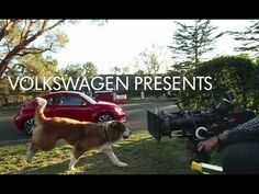 So Cute. lol  the making of: the dog strikes back commercial