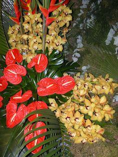 Floralies Sanary