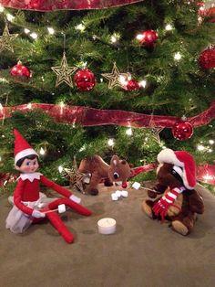 Elf on the Shelf - Sparkle's toasty campfire!