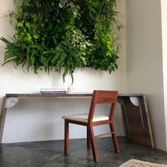 95° Table designed by Giacomo Moor with a Commune Cleat Chair in black walnut and brass. On the wall, there is a living wall graciously installed by our friends at Plantscapers.