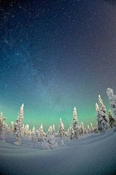 Winter wonderland | by Teemu Lahtinen.