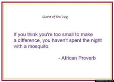 If you think you're too small to make a difference, you haven't spent the night with a mosquito. ~African Proverb Inspirational Quote