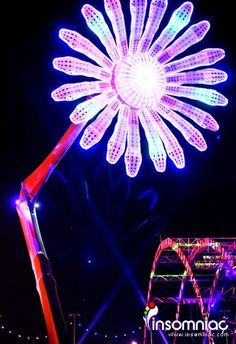 EDC Las Vegas Electric Daisy Carnival Rave
