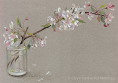 Branch of white and pink spring apple blossoms by CaryeVDPMahoney, $30.00