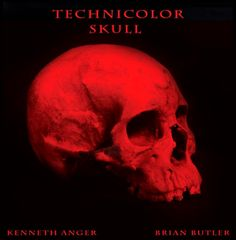 TECHNICOLOR SKULL-LP.jpg