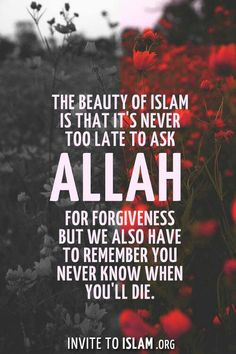 The beauty of Islam is that it's never too late to ask Allah for forgiveness but we also have to remember you never know when you'll die. Forgiveness Quotes, Allah Quotes, Muslim Quotes, Quran Quotes, Religious Quotes, Quotes About Allah, Islam Hadith, Allah Islam, Islam Muslim