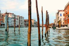 Venice Copyright Will Taylor