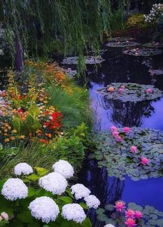Beautiful World, Beautiful Gardens, Beautiful Flowers, Beautiful Places, Nature Aesthetic, Flower Aesthetic, Dream Garden, Belle Photo, Pretty Pictures