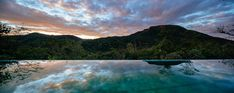 Image 11 of 24 from gallery of Elephant's Hill House / 24 7 Arquitetura. Photograph by Pedro Kok House On A Hill, Cool Pools, Elephant, Spa, Mountains, Gallery, Water, Travel, Outdoor