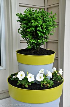 Color blocked Tiered planter