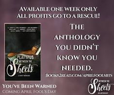#wewentthere #charityanthology #platypus #reading #authors #authorlife #anthology #crazyauthors