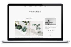 Responsive WP Theme - Videnda ~ WordPress Themes on Creative Market