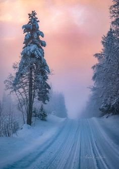 ***Winter road (Finland) by Asko Kuittinen❄️cr. - ***Winter road (Finland) by Asko Kuittinen❄️cr. Winter Magic, Winter Snow, Winter Time, Winter Road, Winter Photography, Nature Photography, Landscape Photography, Winter Scenery, Snow Scenes