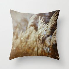 Decorative Pillow Cover Wheat Fall Autumn Brown Cream Rustic Country Farmhouse Earthy Neutral Custom Photo Pillow Case Home Bedroom Decor on Etsy, $36.00