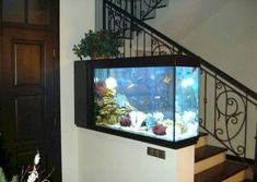 Fish tanks and natural items for aquarium decoration are stylish home decor items that make rooms look more interesting and Feng Shui a home for wealth House Design, Fish Tank Wall, Stylish Home Decor, Modern Interior Decor, House Stairs, Feng Shui, Home Stairs Design, Inspired Homes