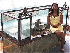 Home Aquarium Ideas: The Aquarium Buyers Guide Antique aquarium -