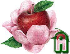 Oh my Alfabetos!: Alfabeto manzana en flor.