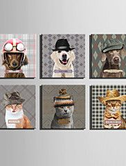 E-HOME®+Stretched+Canvas+Art+An+Animal+In+A+Hat+Series+Decoration+Painting+MINI+SIZE+One+Pcs+–+USD+$+26.99