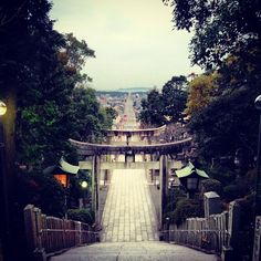 swingmatism:    参道。#shrine#japan#traditional#宮地嶽神社 (宮地嶽神社)