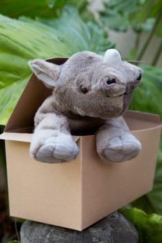 Sponsor Jabari the rhino calf with a gift from the Rare Care Nursery.