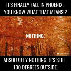 15 Hilarious Memes You'll Only Understand If You Live in Arizona Arizona Humor, Fall Humor, Living In Arizona, Haha So True, Morning Humor, Get To Know Me, Funny Images, Laugh Out Loud
