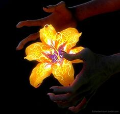 """""""Flower gleam and glow, let your power shine. Make the clock reverse, bring back what once was mine..."""""""