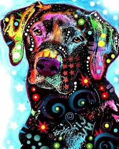 Items similar to Black Lab Labrador Abstract Colorful Dog Art Painting Picture Portrait on Etsy Art Pop, Wow Art, Labrador Retriever Dog, Dog Paintings, Banksy, I Love Dogs, Art Prints, Animal Prints, Canvas Prints