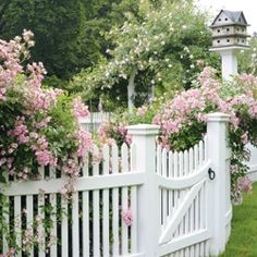 gotta have a garden gate and picket fence with roses climbing on it. Garden Gates And Fencing, Rose Cottage, My Secret Garden, Dream Garden, Pink Garden, Garden Inspiration, Beautiful Gardens, Garden Landscaping, Outdoor Gardens