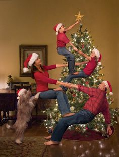 The Bale family & dog Daisy of Coral Springs, Fla. get creative with some team work to don the tree top with a star.