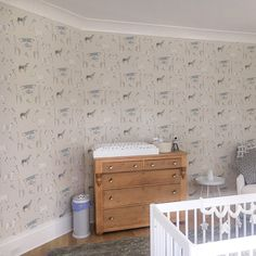 Kids Wallpaper, Zebras, Cool Designs, Merry, Fun, Home Decor, Decoration Home, Room Decor, Home Interior Design