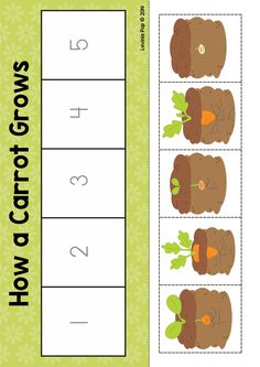 Spring Math Centers for Kindergarten. How a carrot grows sequencing activity. Preschool Garden, Preschool Science, Preschool Learning, Teaching Kids, Kindergarten Centers, Math Centers, Spring Activities, Toddler Activities, Balle Anti Stress