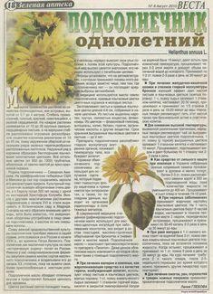 flora sănătoasă și pierderea în greutate)
