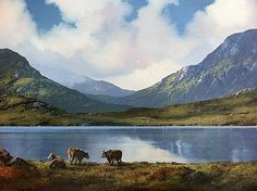 Cattle Resting in Inagh, Connemara by Eileen Meagher Irish Art, Connemara, Belfast, Contemporary Paintings, Cattle, Dublin, Art Gallery, Sculpture, Mountains