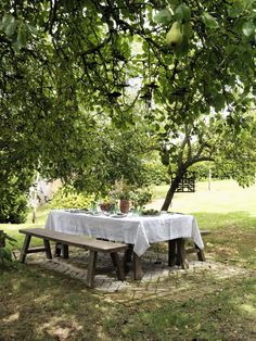 Garden inspiration with fruit tree / fruit trees. Visit our website www. - All For Garden Outdoor Dining, Outdoor Spaces, Outdoor Decor, Garden Cottage, Home And Garden, String Lights Outdoor, Outside Living, Fruit Trees, Dream Garden
