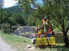 Yogi Bear's Jellystone Park Cherokee: yogi in the smokies
