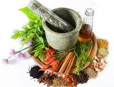 Medicinal Herbs to Grow - http://www.organicfarmingblog.com/medicinal-herbs-grow/