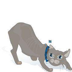 Backbone cat