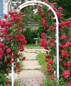 Arch, Outdoor Structures, Garden, Google, Black, Longbow, Garten, Black People, Lawn And Garden
