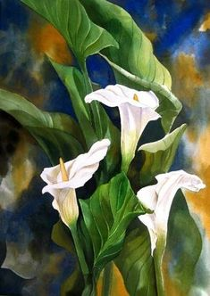 Calla Lily Painting by Alfred Ng Lily Painting, Painting & Drawing, Art Floral, Watercolor Flowers, Watercolor Paintings, Watercolours, Calla Lilies, Canadian Artists, Beautiful Artwork