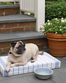 Make this soft bed, suitable for small pooches, with dish towels and a foam insert.