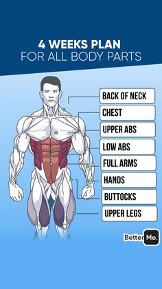 Get Ultimate 28 Days Meal & Workout Plan! Get Ultimate 28 Days Meal & Workout Plan! Chest And Tricep Workout, Chest Workout For Men, Chest Workout Routine, Gym Workouts For Men, Weight Training Workouts, Triceps Workout, Chest Workouts, Shoulder Workout, At Home Workouts